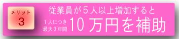 画像:10万円を補助