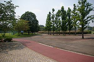 画像:石岡運動公園03