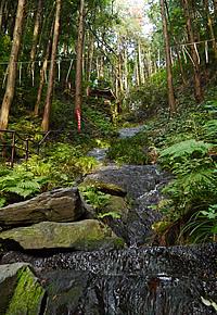 画像:鳴滝の流れ