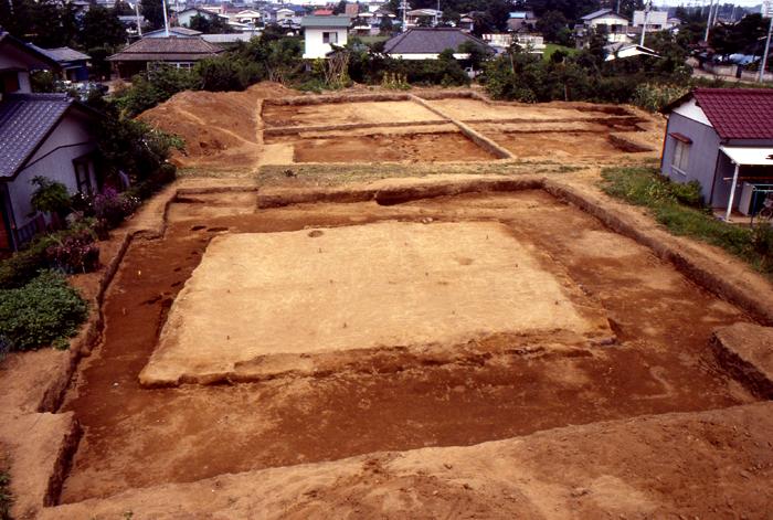 画像:茨城廃寺跡
