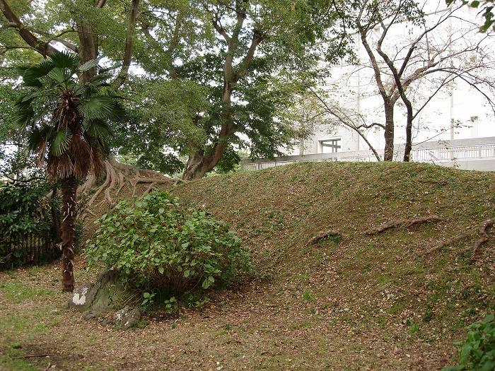 画像:府中城の土塁