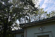 画像:第二絶対観測室02-気象庁地磁気観測所