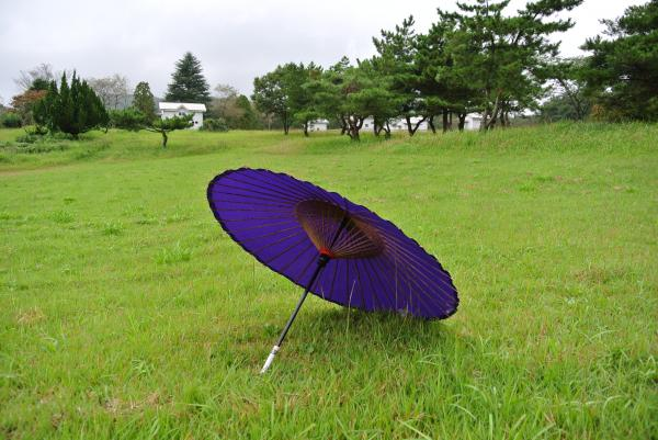 画像:地磁気観測所番傘