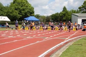 画像:女子100メートルの様子