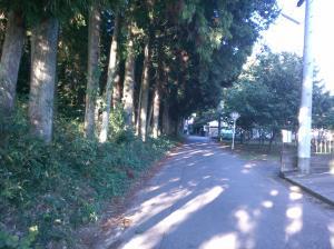 『森林施工前』の画像