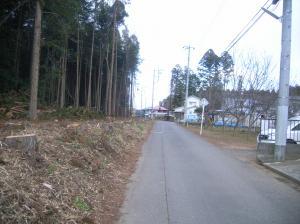 『森林施工後』の画像