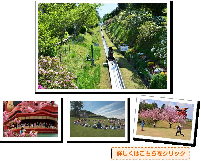『観光施設』の画像