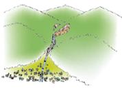 『土石流』の画像