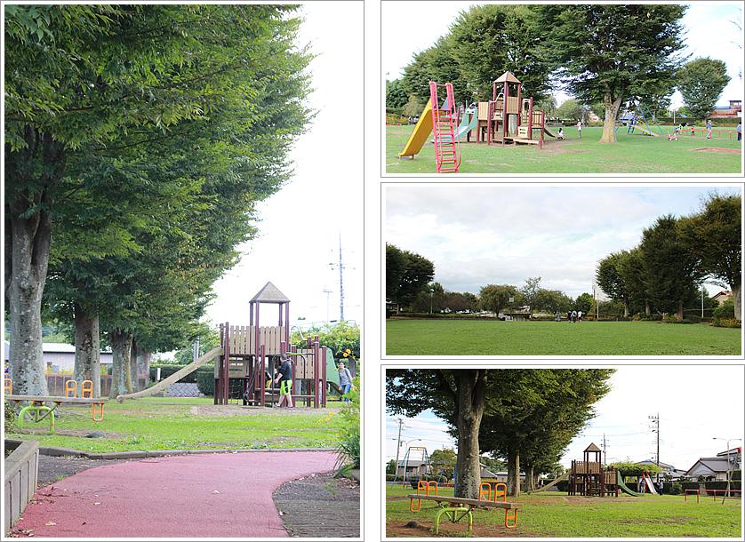 『国府公園』の画像
