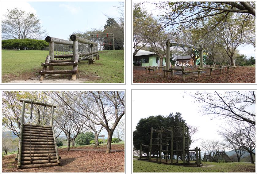 『茨城県フラワーパーク』の画像