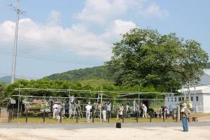 『巨樹の会2』の画像