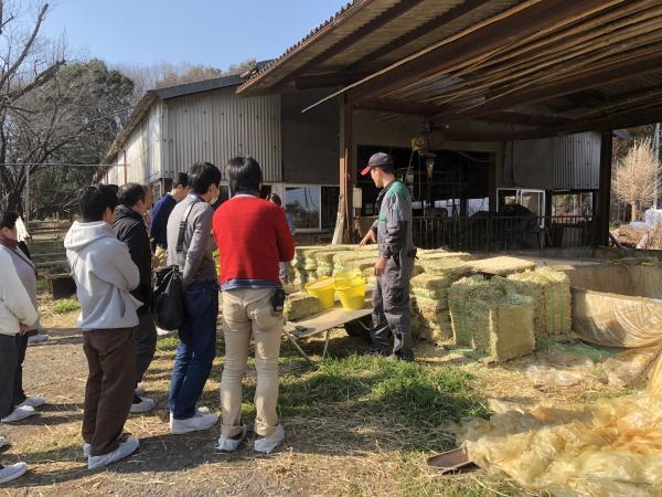 『鈴木牧場』の画像
