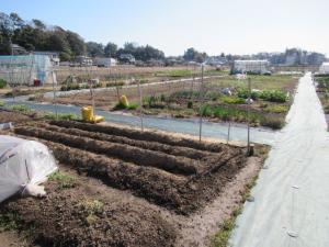『宮部ふれあい農園』の画像