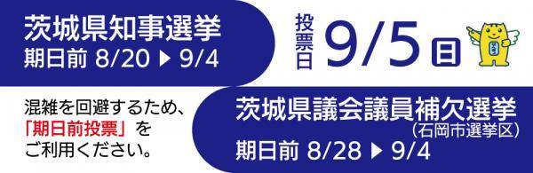 『R3.9.5知事県議補選』の画像