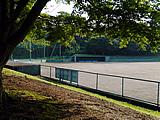 施設:染谷野球場